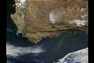 Phytoplankton bloom along the coast of South Africa