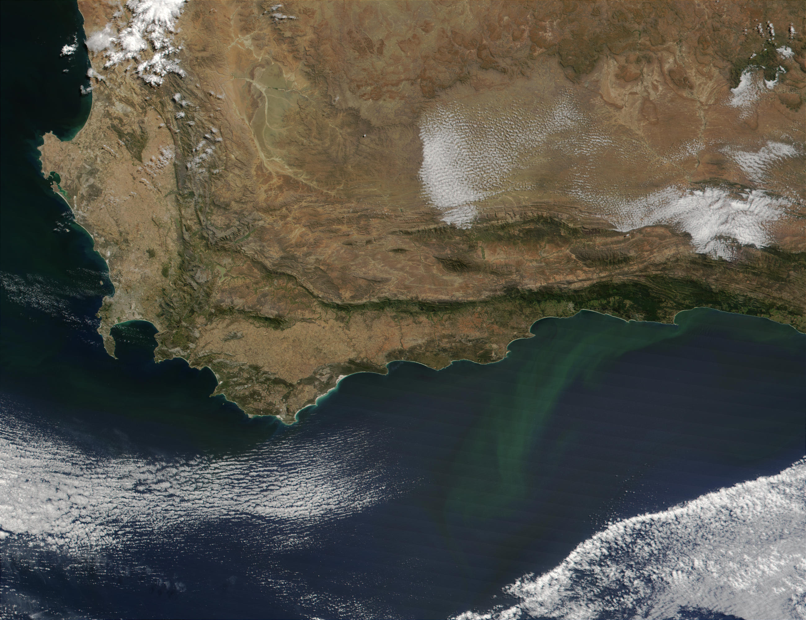 Phytoplankton bloom along the coast of South Africa - related image preview