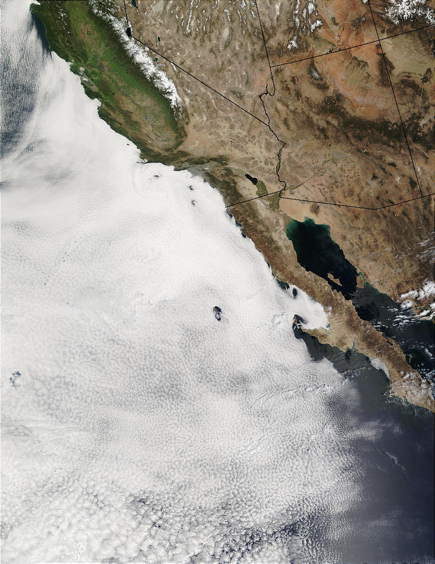 Large stratocumulus deck off the coast of Baja California - related image preview
