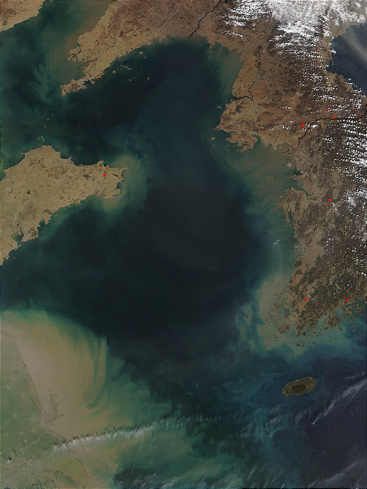 Phytoplankton and sediments in Yellow Sea - related image preview