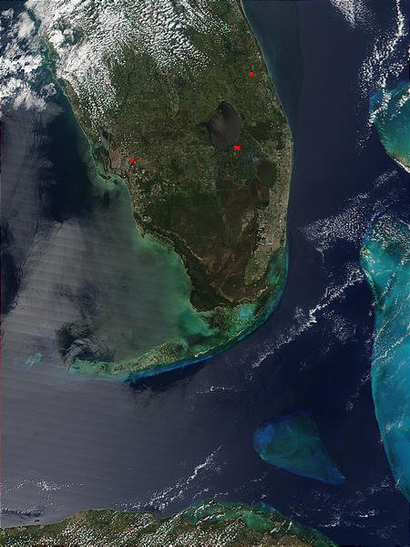 Southern Florida - related image preview