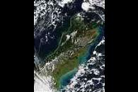 Phytoplankton bloom along the coast of New Zealand