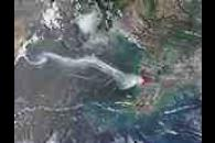 Wildfire in Southernmost Vietnam