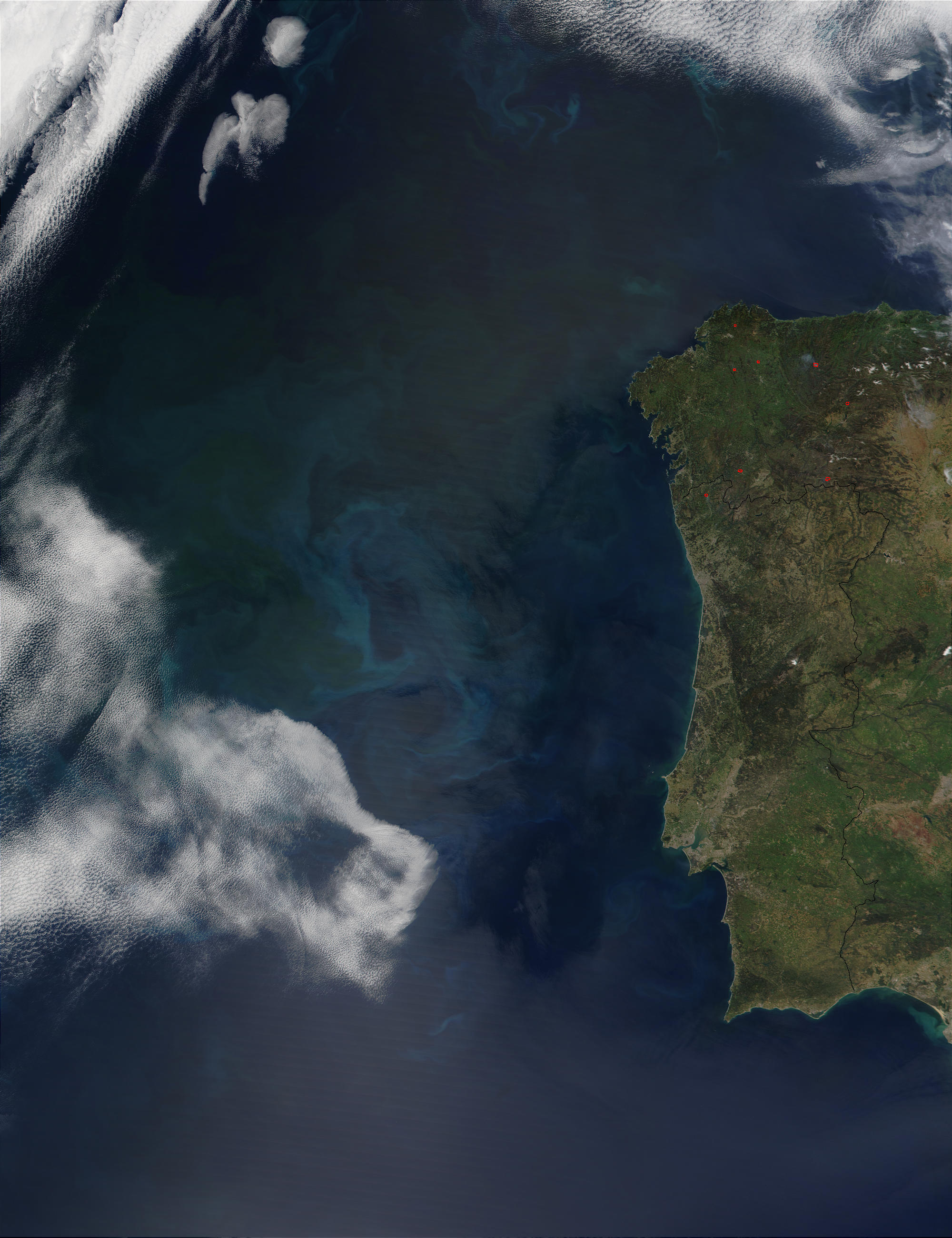 Phytoplankton bloom off the coast of Portugal - related image preview