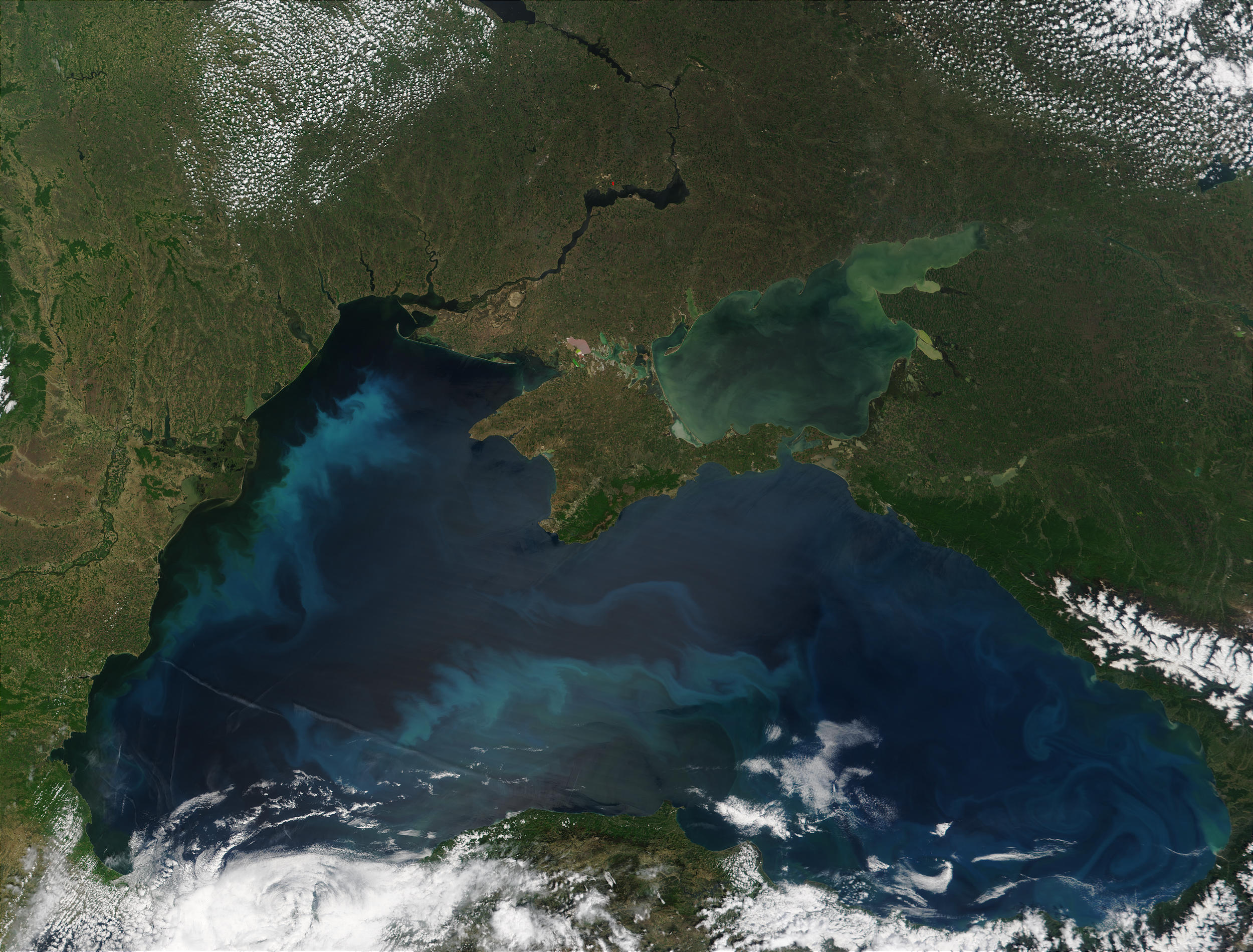 Phytoplankton bloom in the Black Sea - related image preview