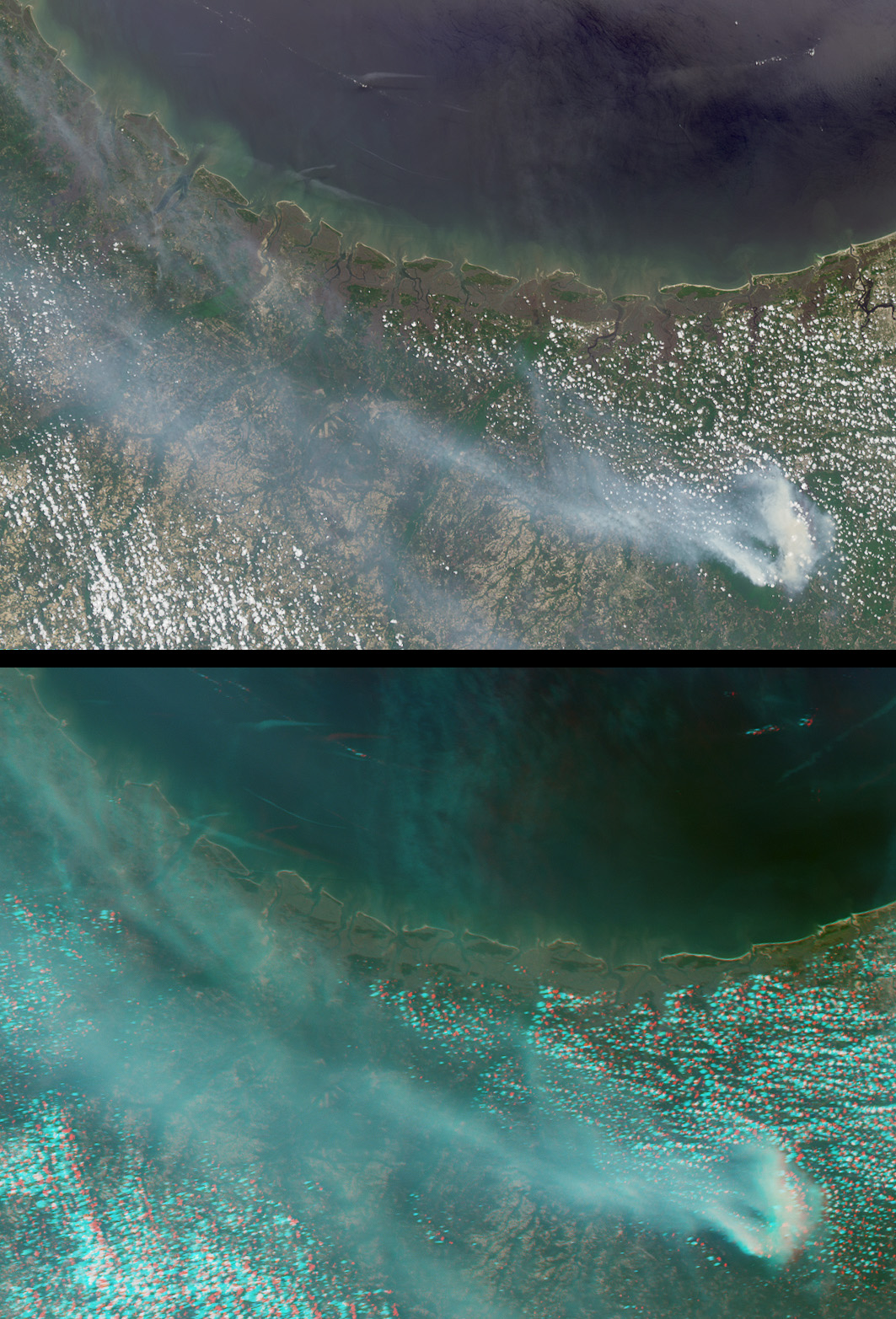 Okefenokee Swamp Fire, Georgia - related image preview