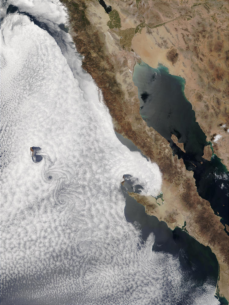 Vortex street off Baja California, Mexico - related image preview