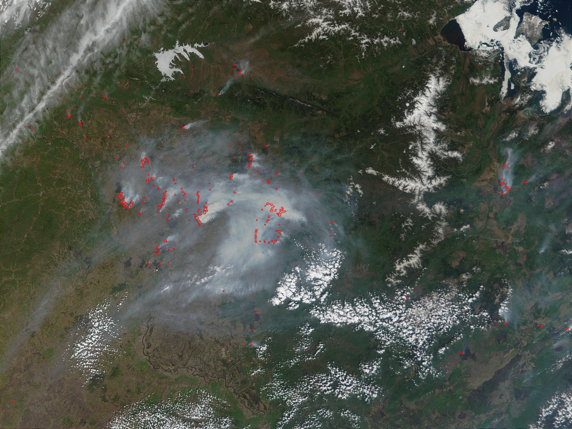 Fires in the Amur Region, Russia - related image preview