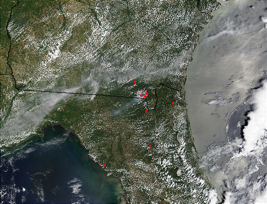 Blackjack Bay Complex fire, Georgia - related image preview