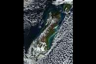 Phytoplankton bloom and sediments along the coasts of New Zealand