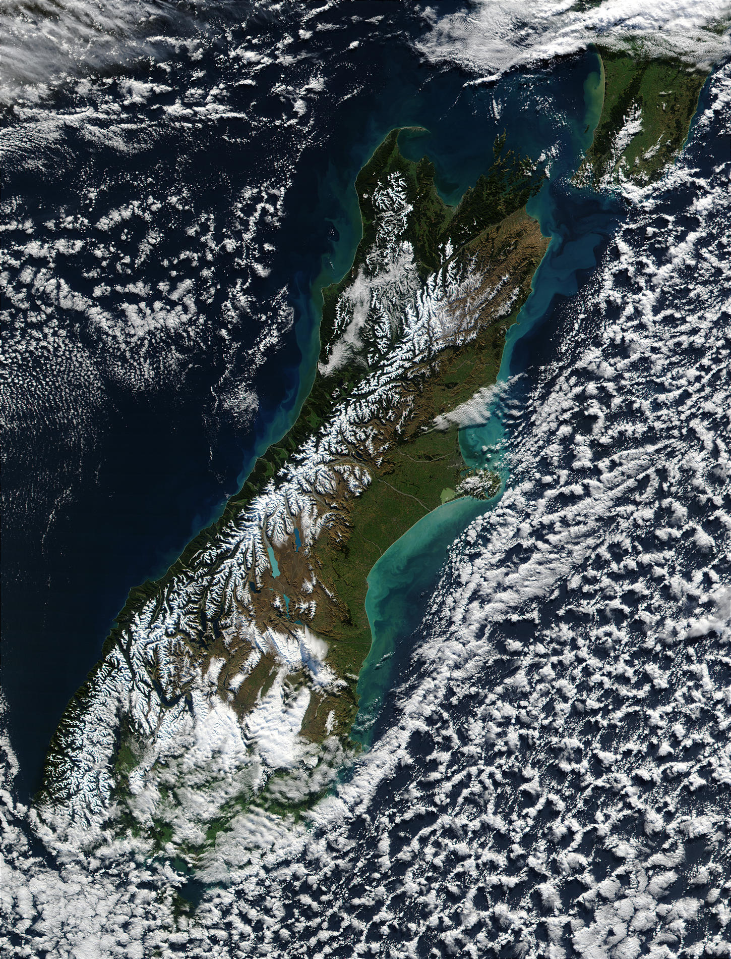 Phytoplankton bloom and sediments along the coasts of New Zealand - related image preview