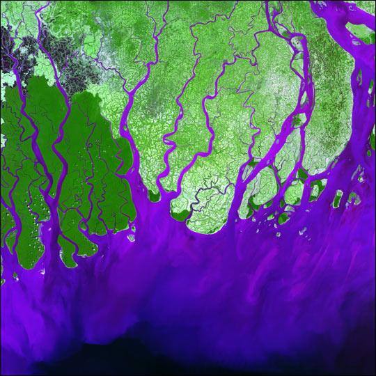Landsat Image Gallery - Ganges River Delta