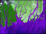 Ganges River Delta - selected image