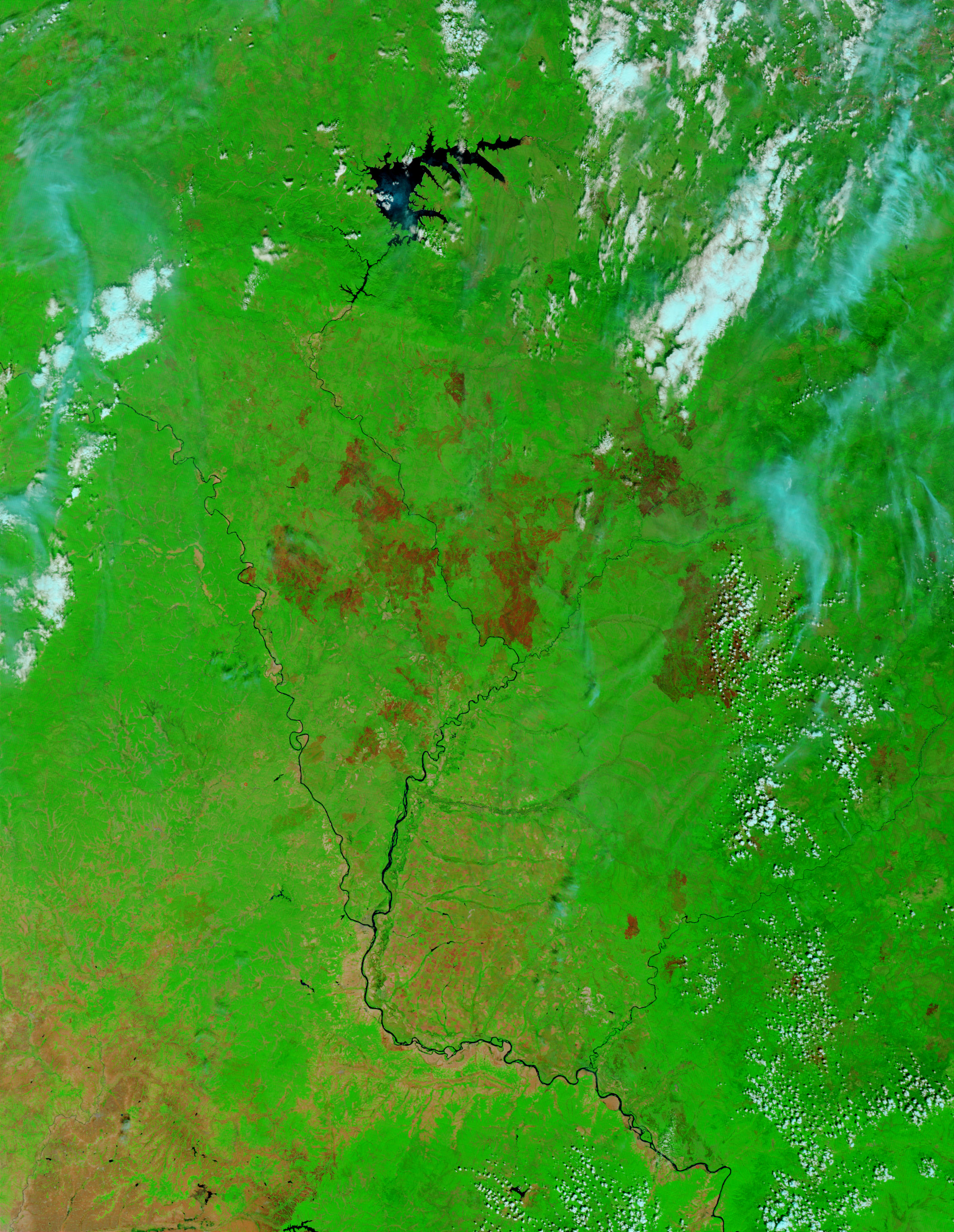 Burn scars in the Amur region, Eastern Russia - related image preview