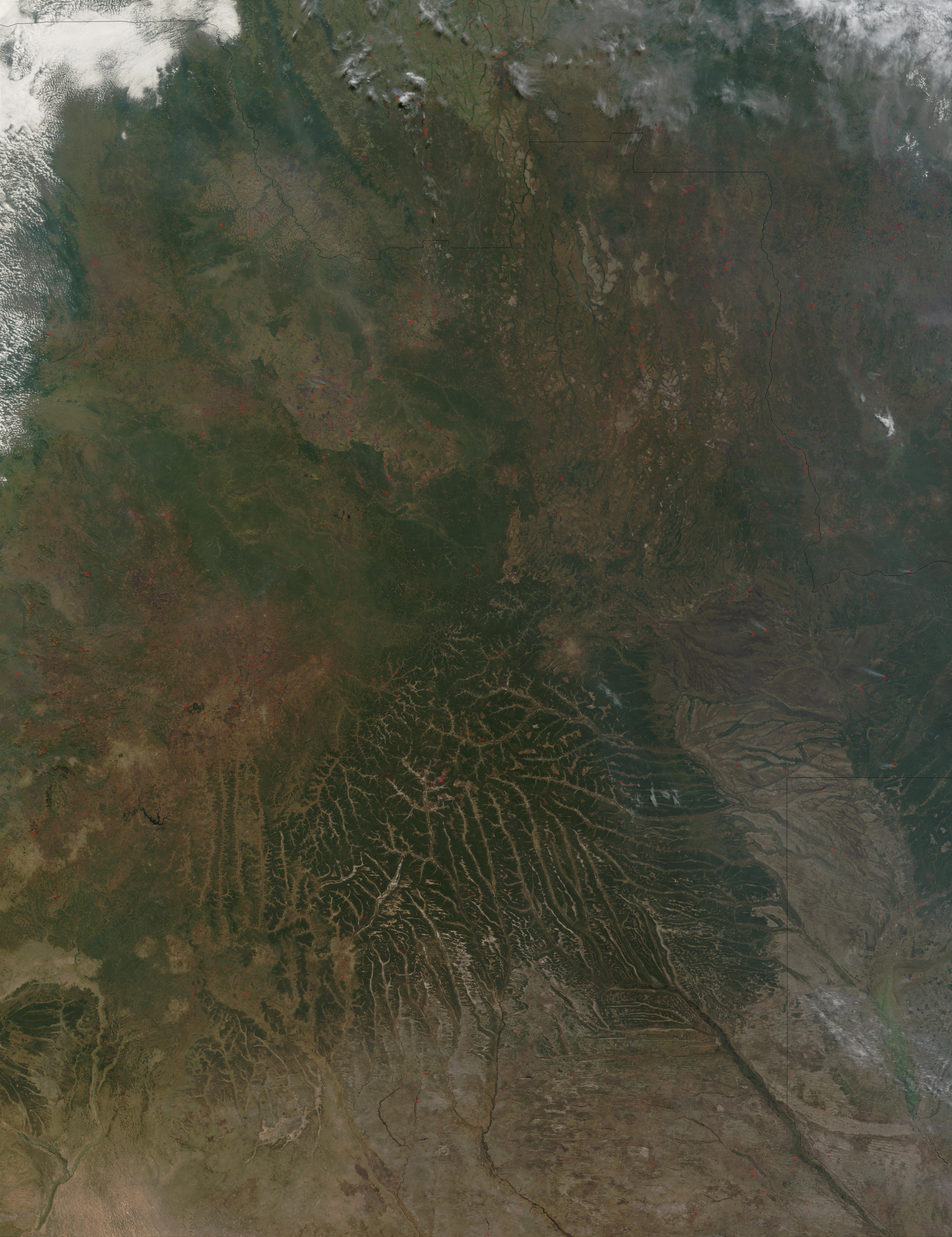 Fires in Angola - related image preview