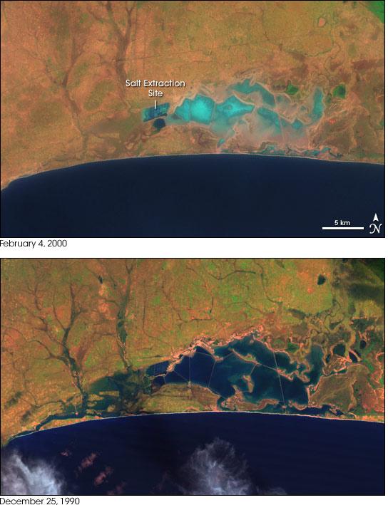 Songor Lagoon, Ghana