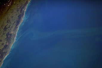 Plankton Plume, North Island, New Zealand - related image preview