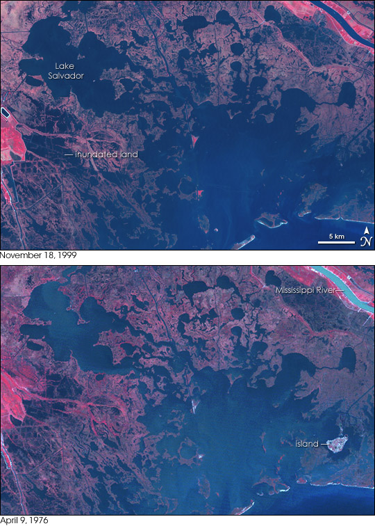 Louisiana Wetland Loss