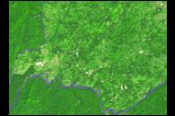 Deforestation in Guinea's Parrot's Beak Area