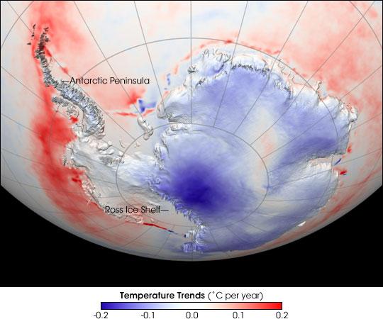 Antarctic Temperature Trend 1982-2004