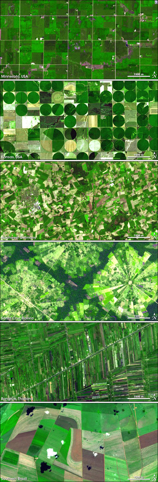 Agricultural Patterns