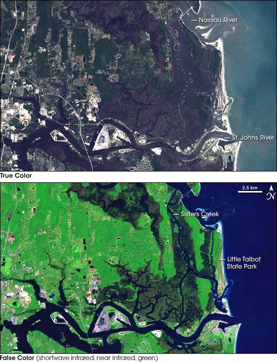 Machaba Balu Preserve, Florida