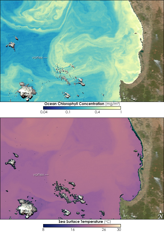 Ocean Vortex off Western Australia