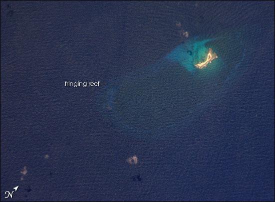 Aves Island