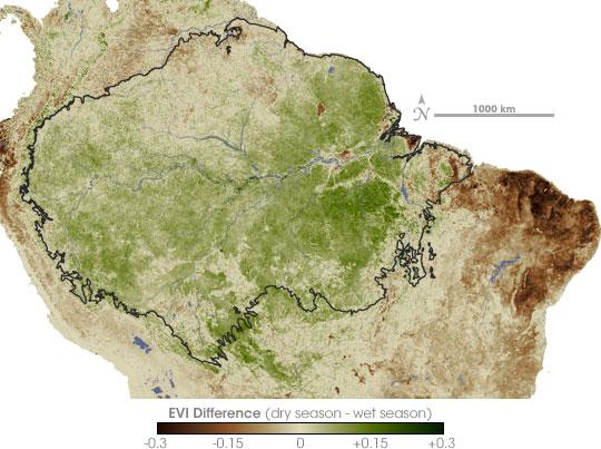 Amazon Greener in Dry Season than Wet