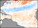 Atlantic Sea Surface Temperature Anomaly