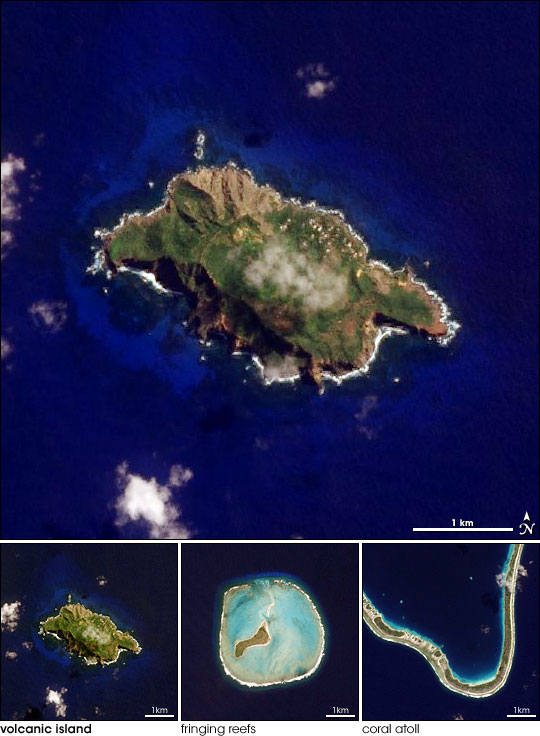Island Evolution, Part 1: Pitcairn Island