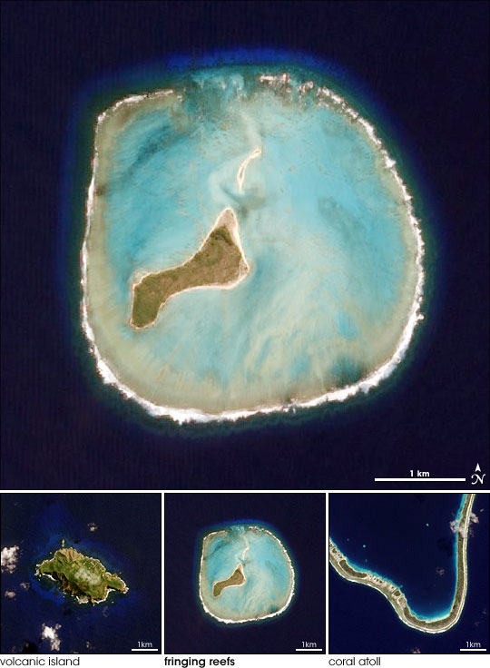 Island Evolution, Part 2: Oeno Island