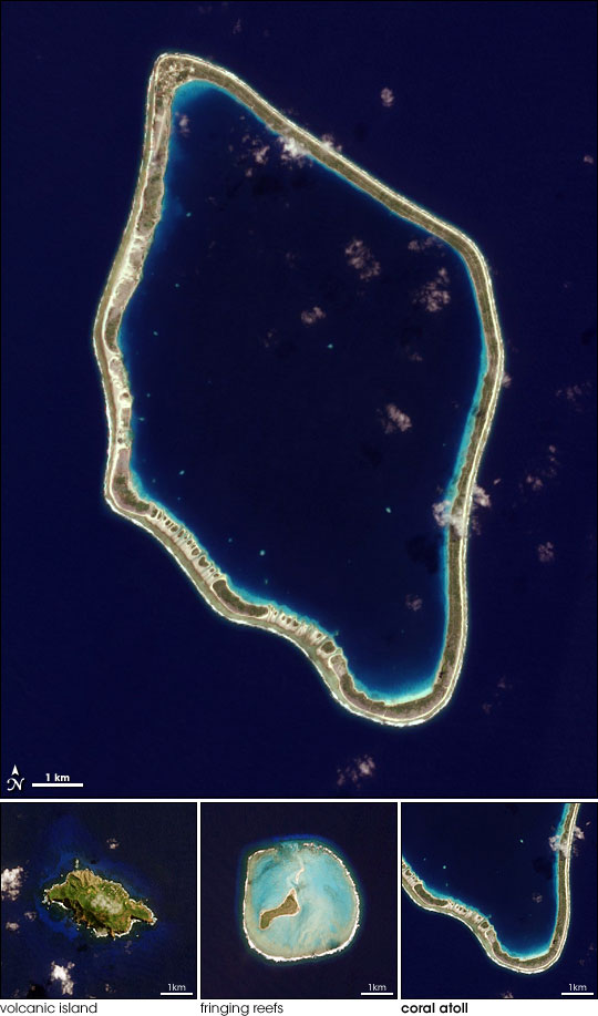 Island Evolution, Part 3: Tureia Atoll