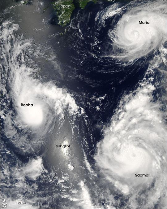 Pacific Typhoons