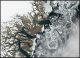 Sea Ice off Greenland Coast