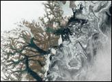 Sea Ice off Greenland Coast