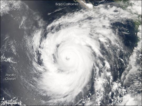 Hurricane Ileana