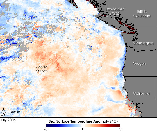 Pacific Cooler Than Normal in Oregon Dead Zone