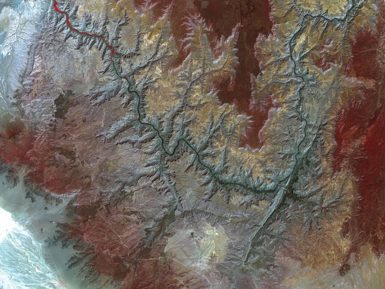 Grand Canyon Image Of The Day