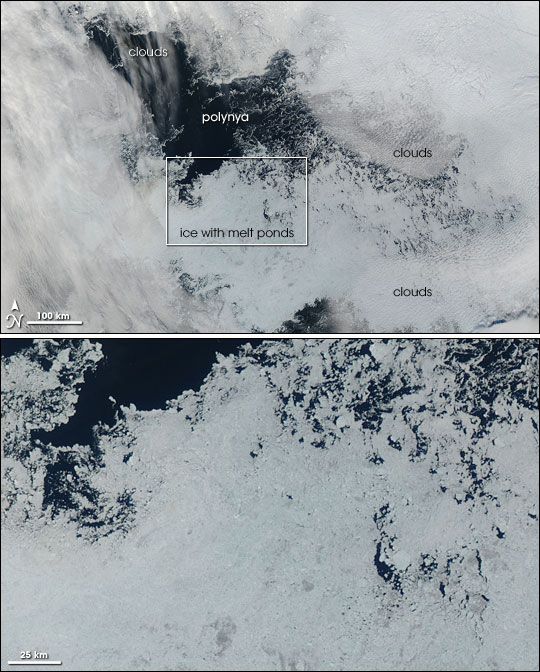 Polynya North of Alaska
