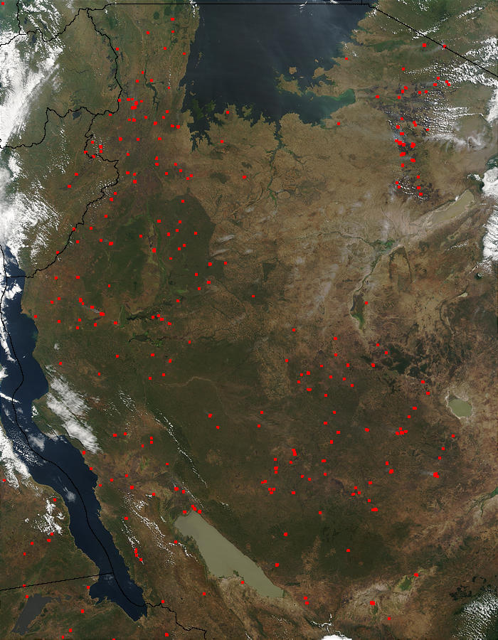 Fires in Tanzania - related image preview