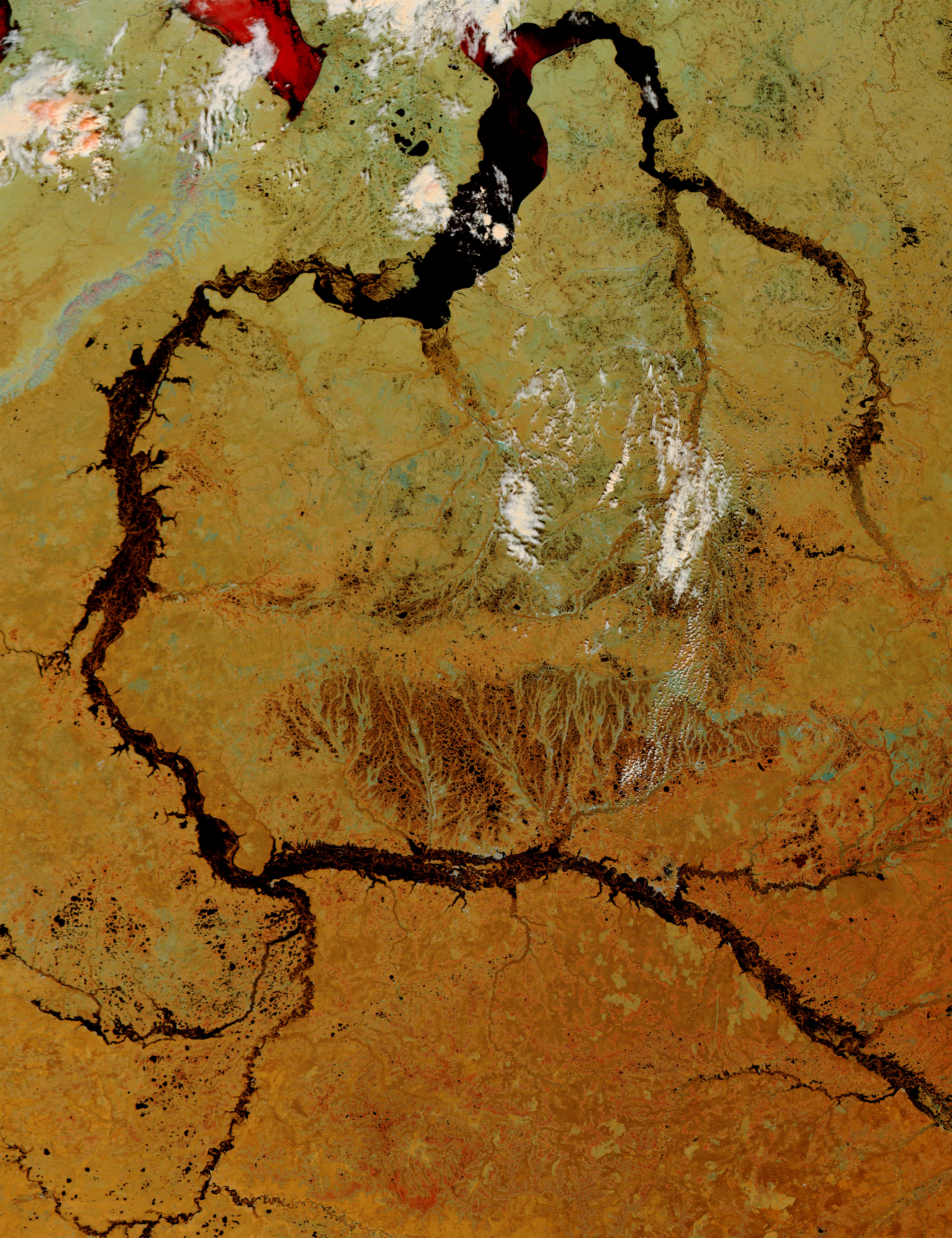 Flooding of the Ob and Taz Rivers, Russia - related image preview