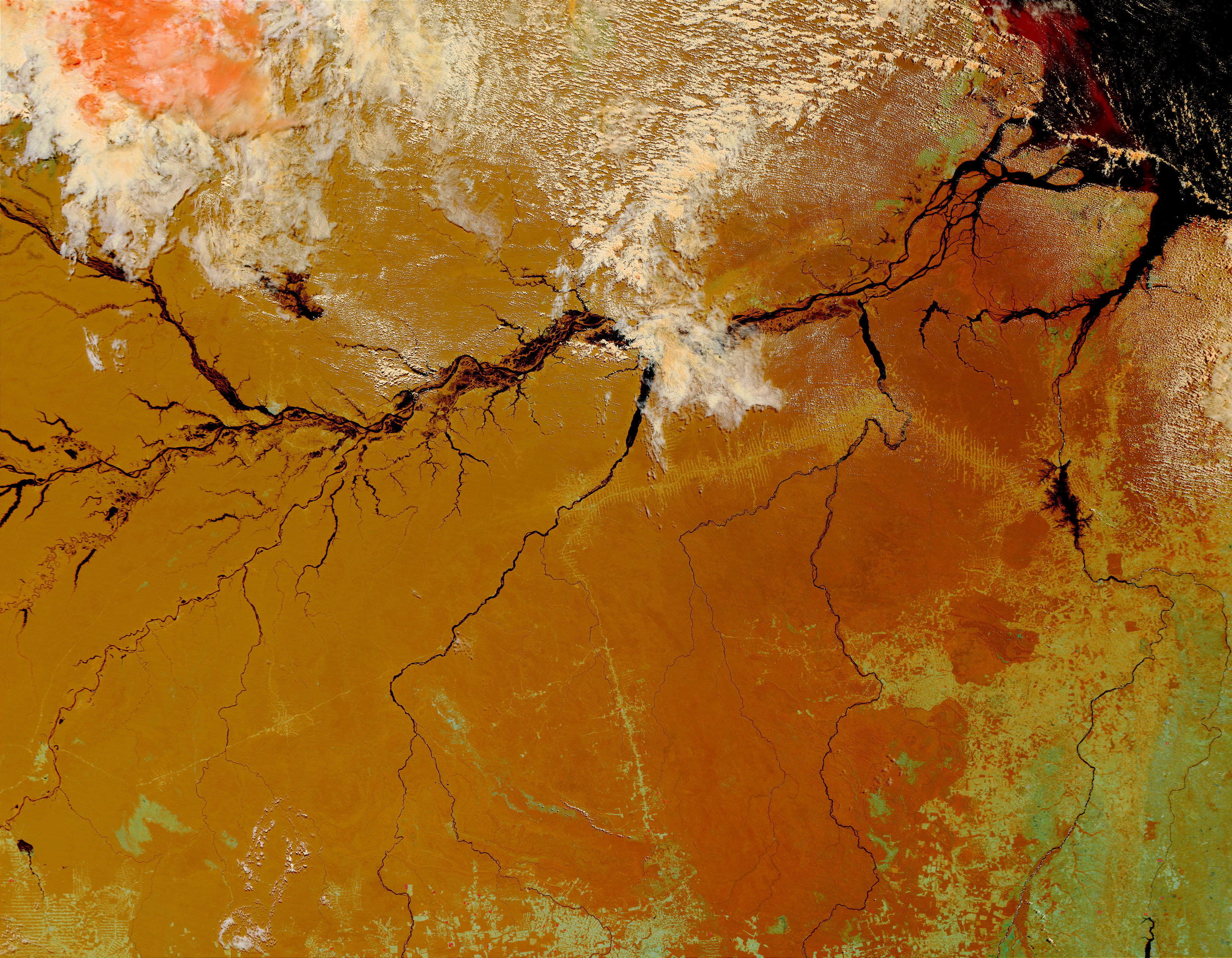 The Amazon, Brazil - related image preview