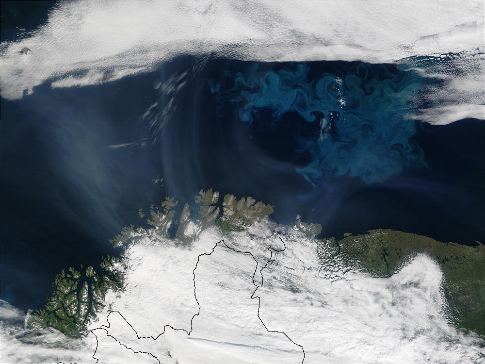 Smoke from Saskatchewan fires (Canada) and phytoplankton bloom off Northern Norway - related image preview