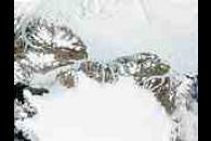 Ellesmere Island (Canada) and Northern Greenland