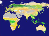 New Land Cover Classification Maps - selected image