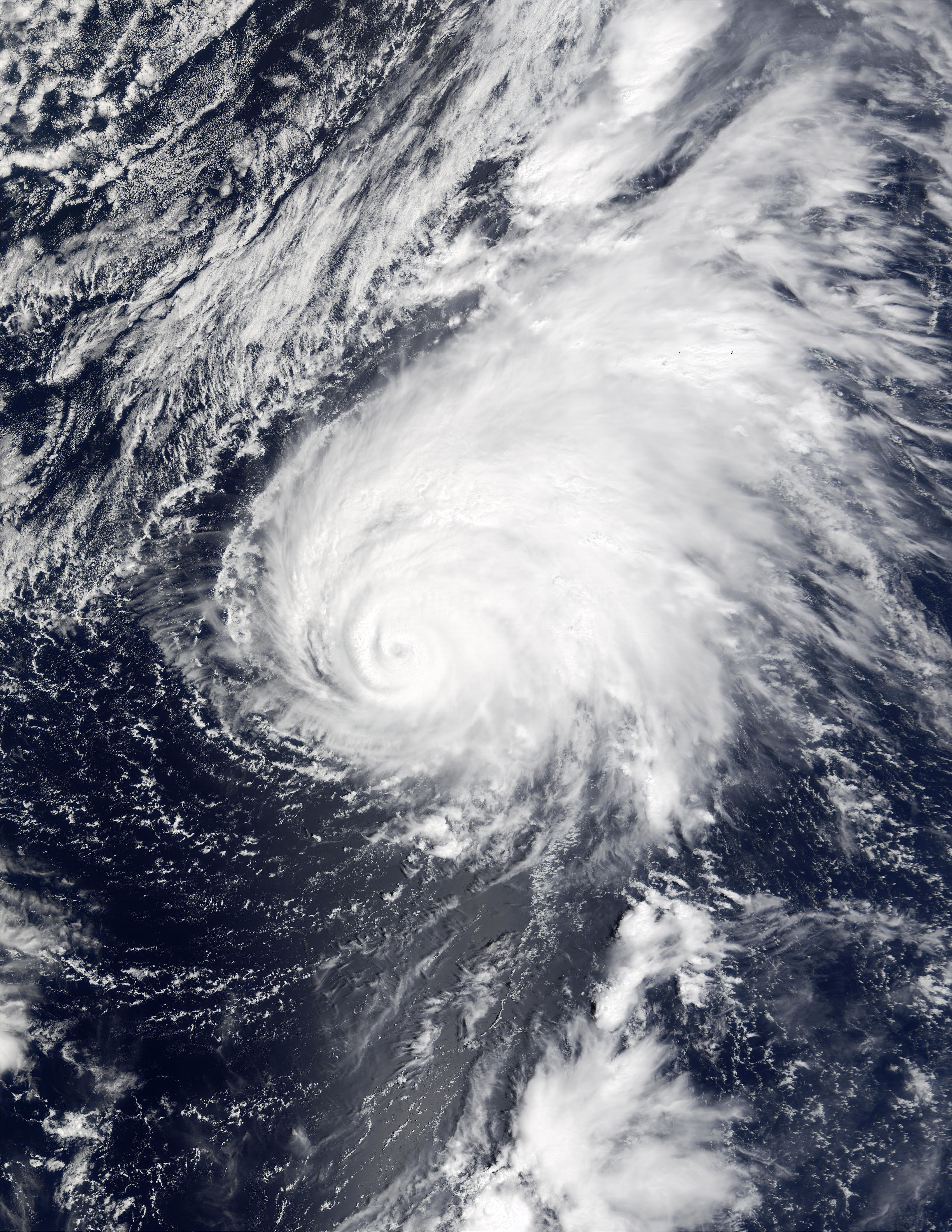 Typhoon Ele (02C), Central Pacific Ocean - related image preview