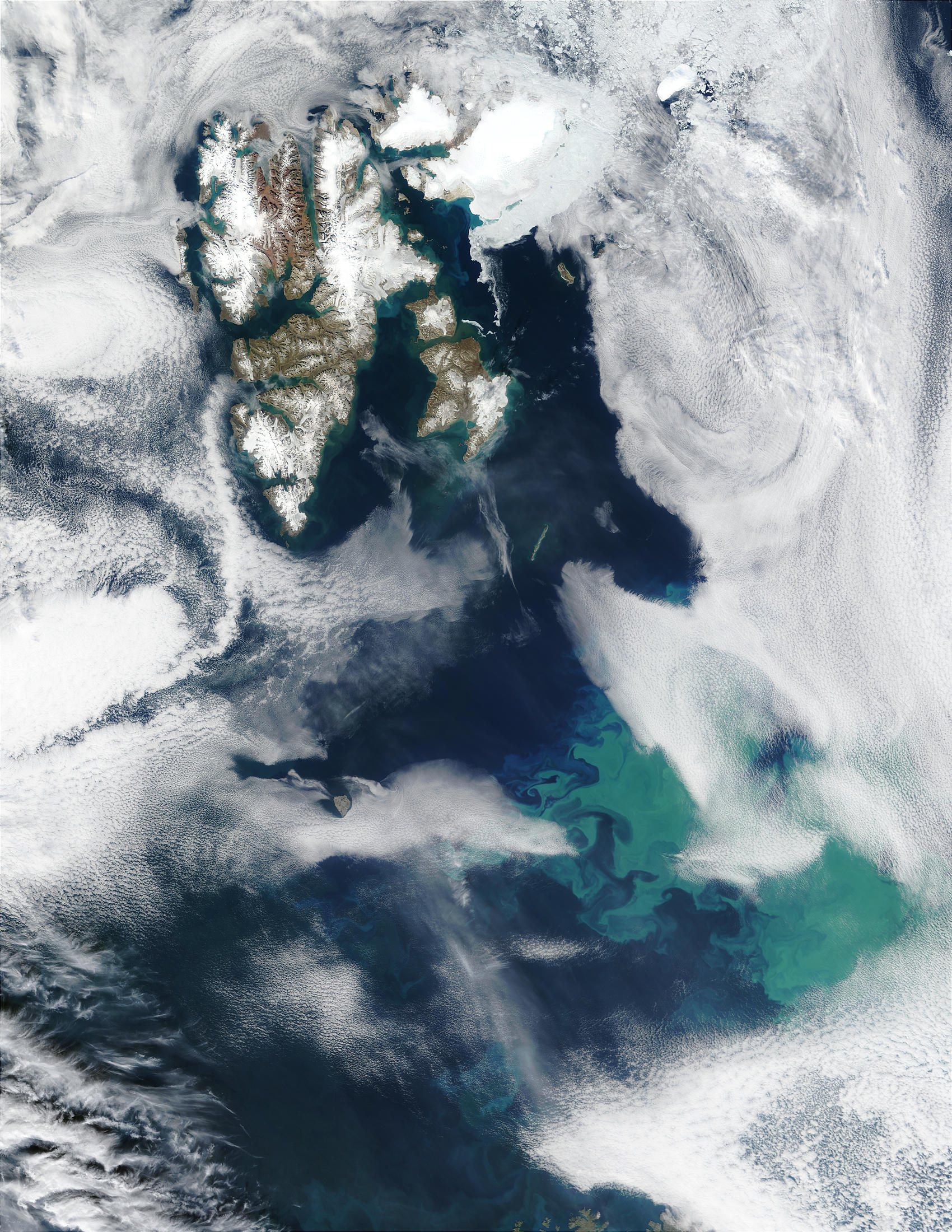 Phytoplankton bloom near Svalbard in Barents Sea - related image preview