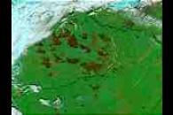 Burn scars near Yakutsk, Russia