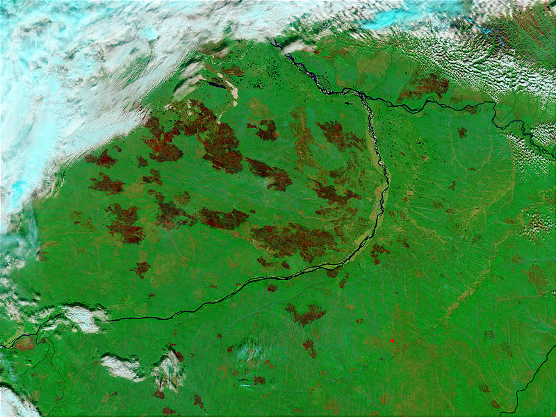 Burn scars near Yakutsk, Russia - related image preview
